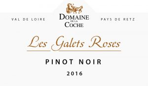 vin-pinot-noir-2016